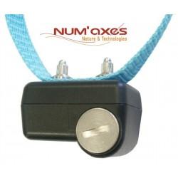 Canicalm First NUMAXES -...