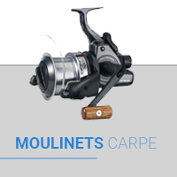 Moulinet Carpe